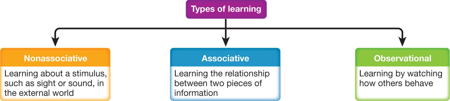 Three Major Types of Learning - University of Washington