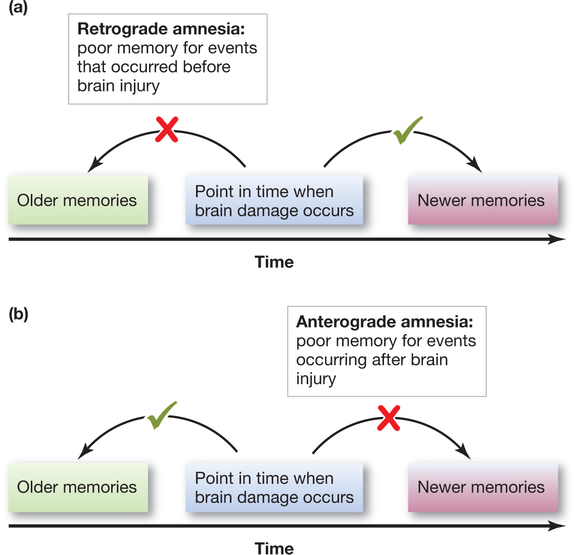 amnesia memory loss Can anesthesia cause memory loss ensuring no recall for traumatic events during surgerysome people have short term amnesia/memory loss or other cognitive symptoms.